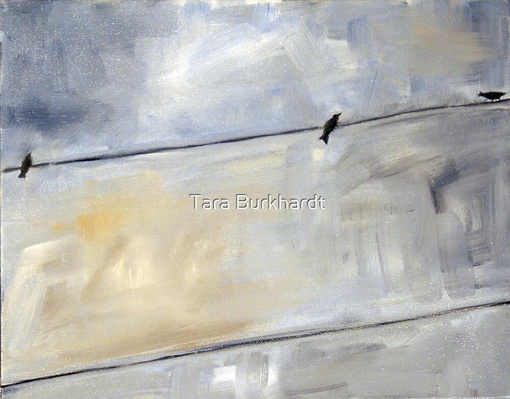 Looking Up 4 by Tara Burkhardt