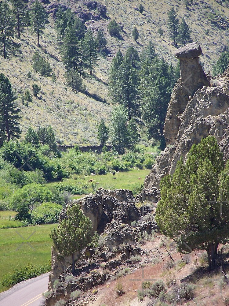 Eastern Oregon - Hwy 245 Balancing Rock by Betty  Town Duncan