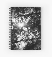 The memory of trees Spiral Notebook