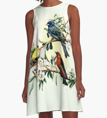Songbirds - goldfinch, indigo bunting and scarlet tanager A-Line Dress