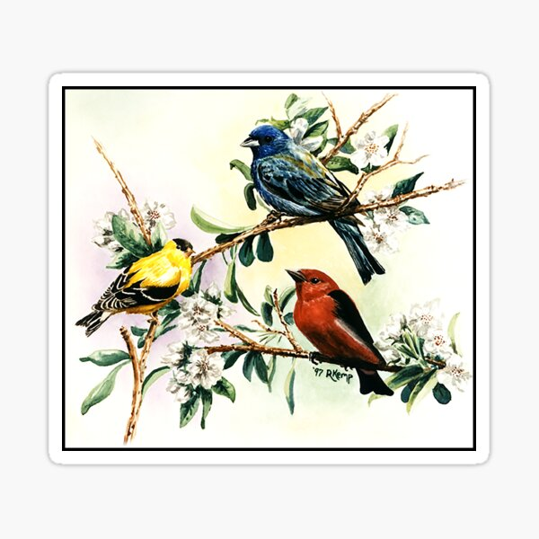Songbirds - goldfinch, indigo bunting and scarlet tanager Sticker