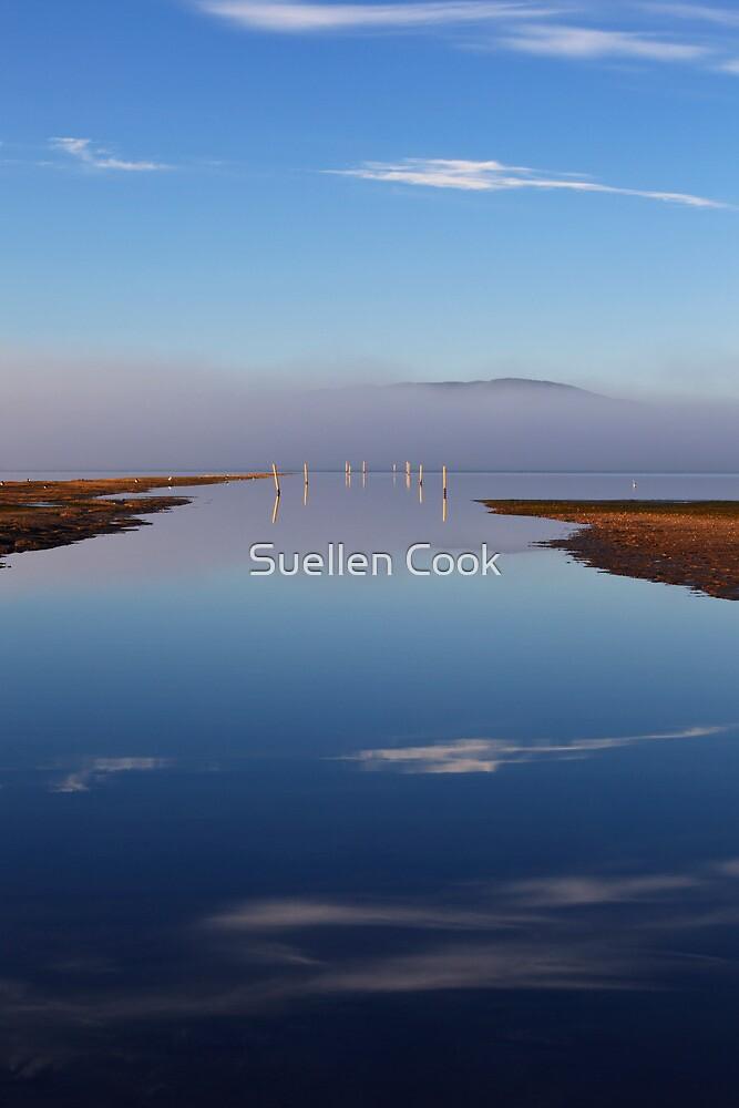 Boomer Bay by Suellen Cook