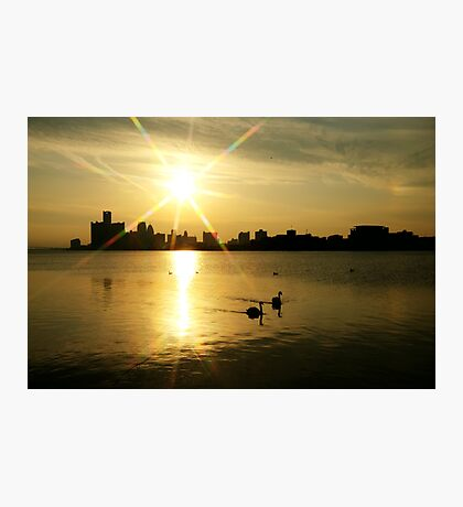 Motor City Swan Song.... Photographic Print
