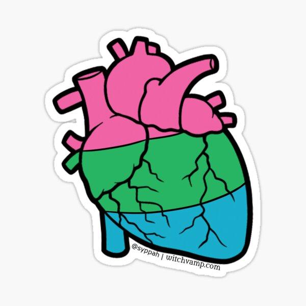 Polysexual Pride Anatomical Heart Sticker