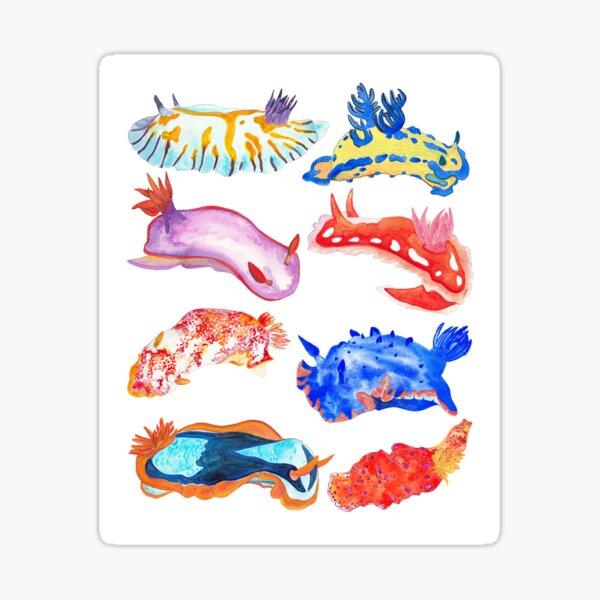 Nudibranchs Sticker
