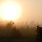 Sunrise in mist 2 by Antanas
