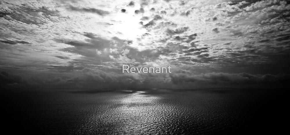 Mono sea La Ciotat Nov. 2009 by Revenant