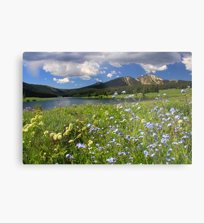 Greens & Blues Are The Colors I Choose Metal Print
