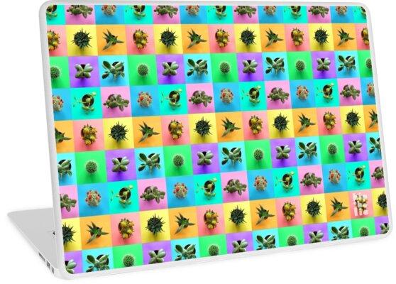 Plant Color Pop Print by hipaholic