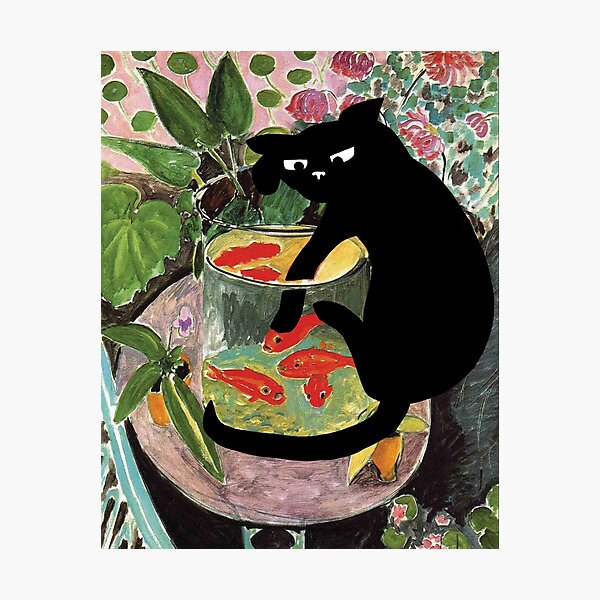 matisse's goldfish and a cat Photographic Print