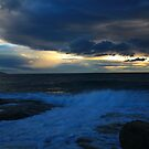 stormy tasman sea. eastcoast tasmania by tim buckley | bodhiimages