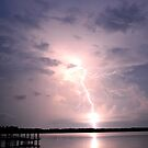 Natures Fireworks in Florida by victor246