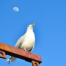 Moon by Ameth