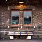 Cigarette Butts and a Bench 5D Mark II by RandiScott