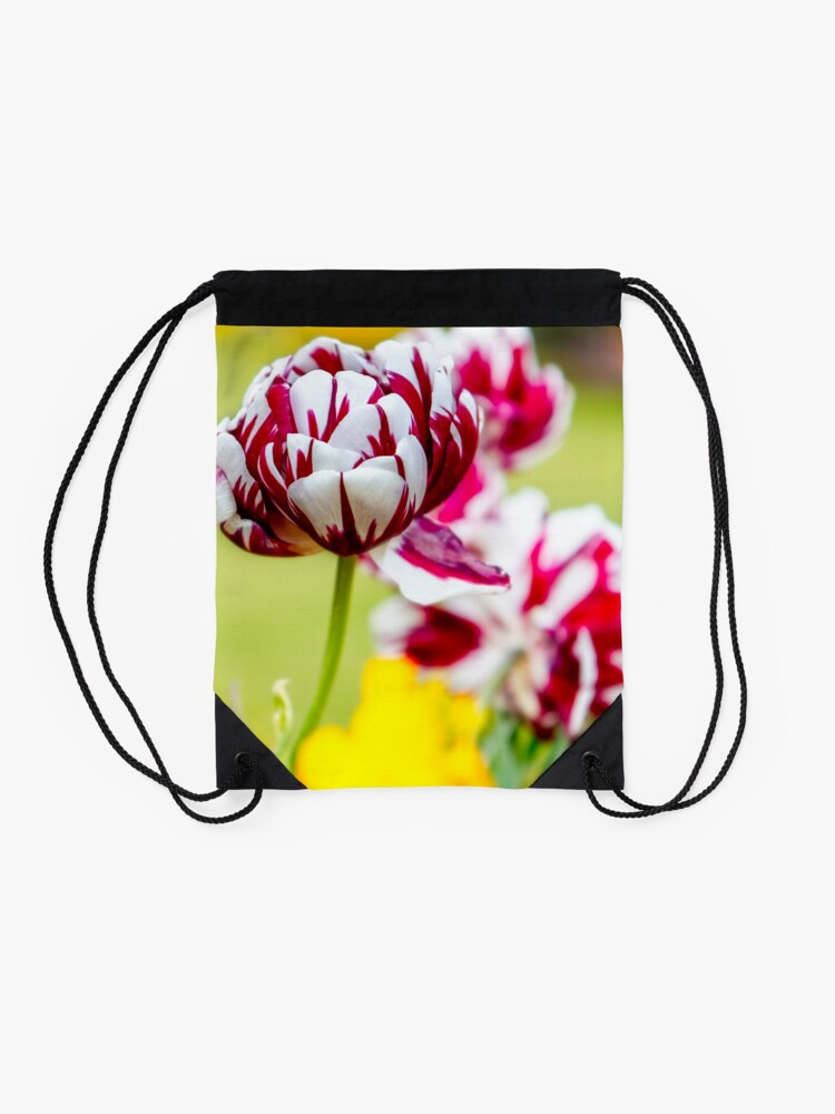 Alternate view of The Glorious Showman of the Flower World - The Tulip Drawstring Bag