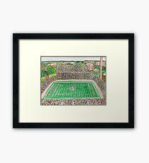 Spartan Stadium Framed Print