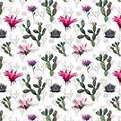 «Cactus» de Emma   Reznikova