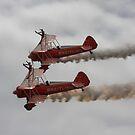 Wingwalkers by SWEEPER
