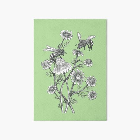 bees and chamomile on succulent green background Art Board Print