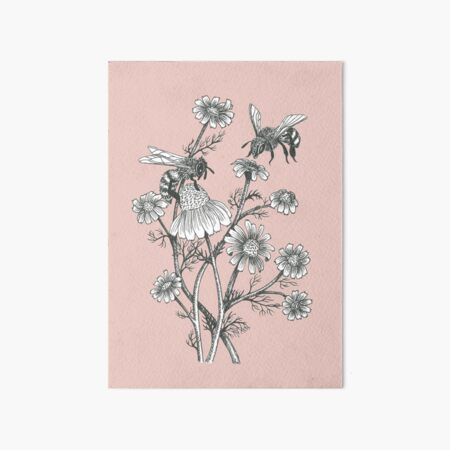 bees and chamomile on dusty pink background Art Board Print
