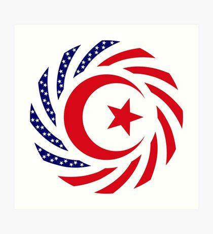 Muslim American Multinational Patriot Flag Series 1.0 Art Print