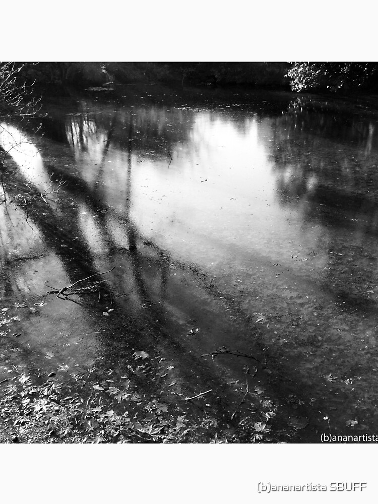 Little lake in the park (black and white photography) by bananartista