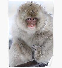 Wearing my winter best Poster
