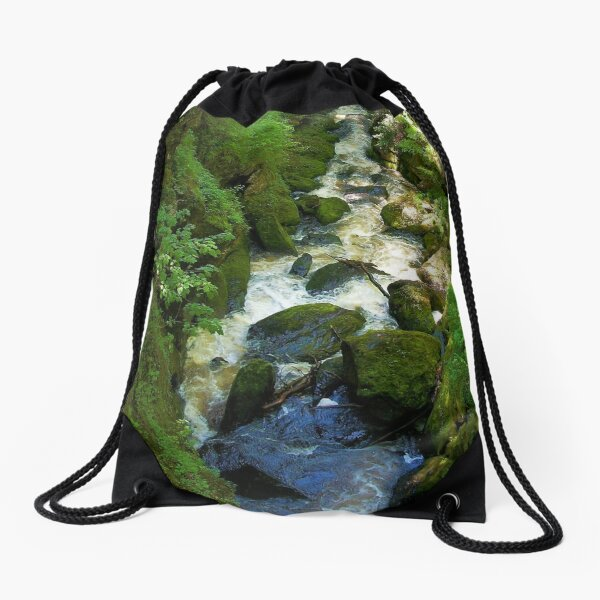 Bushkill Falls Drawstring Bag