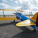 American Barnstormer Biplane by WolfPause
