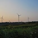 Windturbines at sunset, Whittlesay by ShroomIllusions