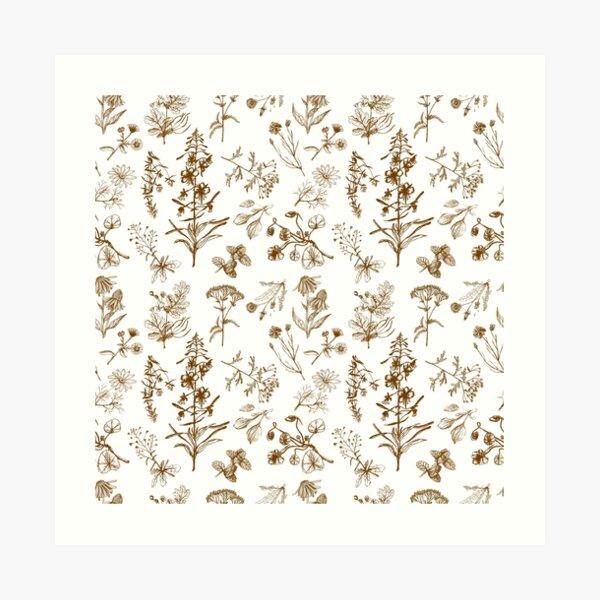 Summer herbs Art Print
