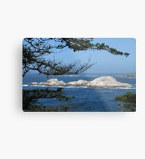 Coastline through Trees Metal Print