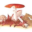 Amanita muscari - Fly Agaric by Cheryl Hodges