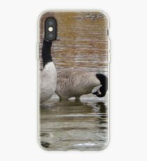 Early Morning Geese on Okauchee Lake  iPhone Case