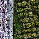 Carnival Parade by DRONY