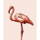 Monochrome pink flamingo nr 1 by VrijFormaat