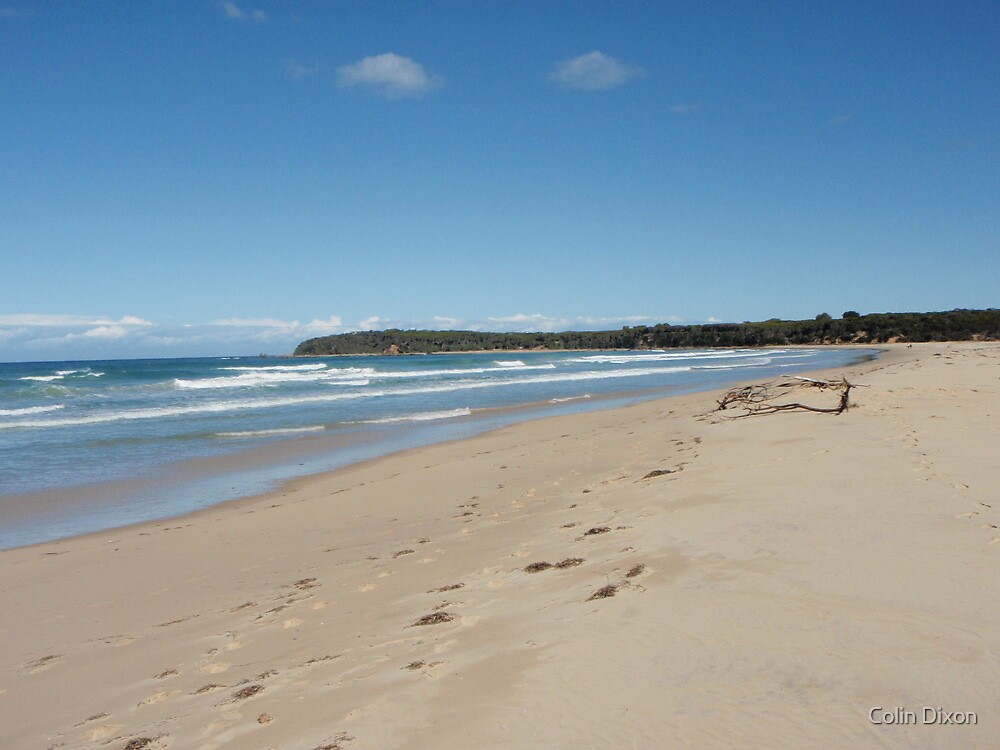 Mallacoota Bastion Point by Colin Dixon