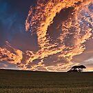Cornfield Sunset - County Durham, UK by David Lewins