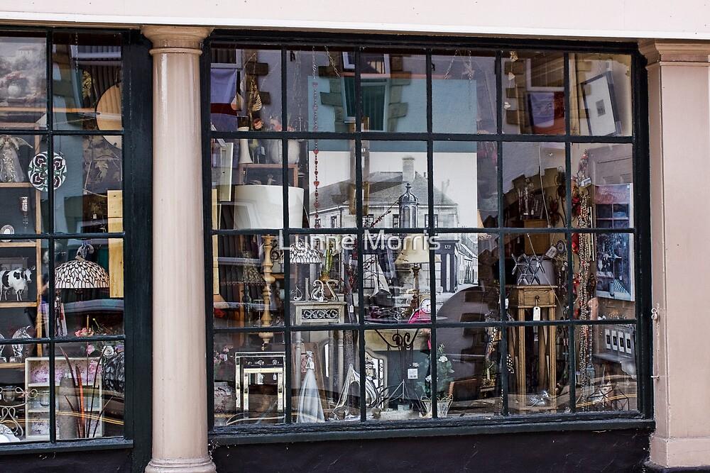 Curio Shop by Lynne Morris