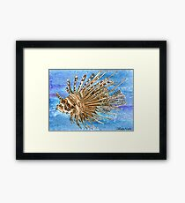 Daily Doodle 8 - Lionfish Framed Print