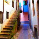 Stairs in Verbania by Christine  Wilson
