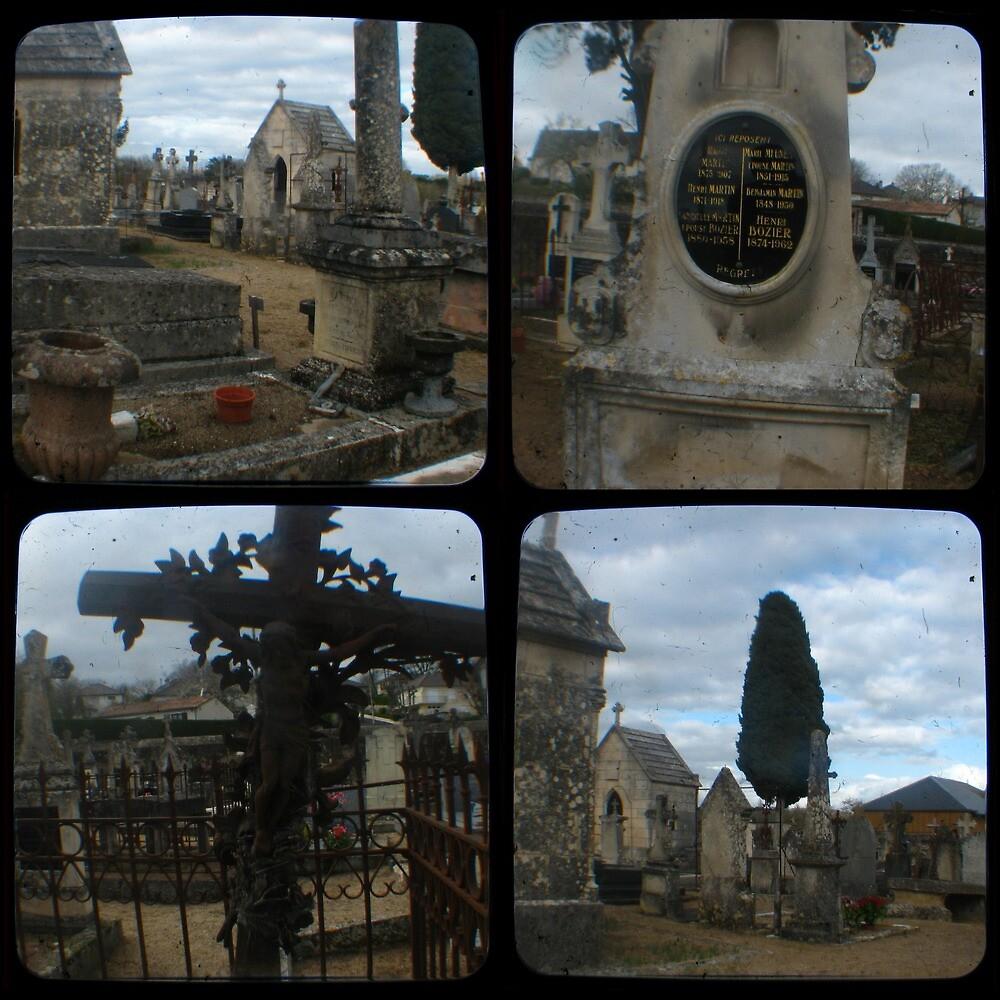 Village Cemetery through the viewfinder by seriykotik