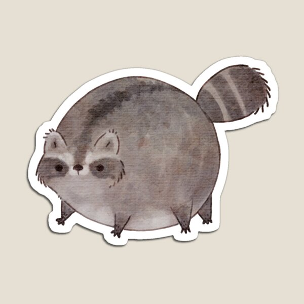 Raccoon Magnets Redbubble