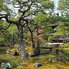 Silver Pavilion, pond by andreisky