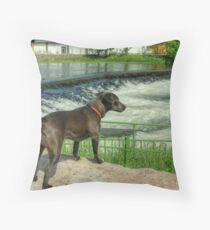 Backbarrow Tarn Throw Pillow