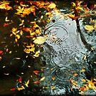 Rain by laurentlesax