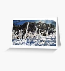 """""""Ice worms"""" Greeting Card"""