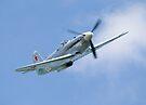 Russian Yak 9 Collection by Nigel Bangert