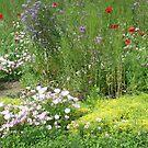 A Garden of Love by Karen K Smith