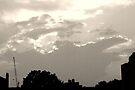 Setting Sky V.2 by C. Rodriguez